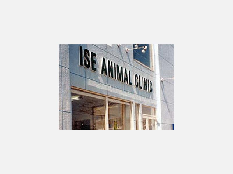 イセ動物病院