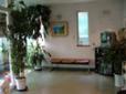 内山動物病院