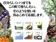 花の広場/佐野デイサービスセンター