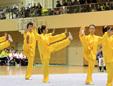 栃木県武術太極拳連盟