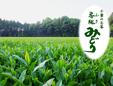 有限会社河野製茶工場