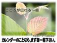 大日本ピーアール株式会社