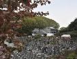 法妙寺城山霊園