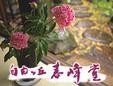 有限会社自由ヶ丘春峰堂