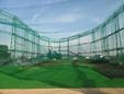立場ゴルフ