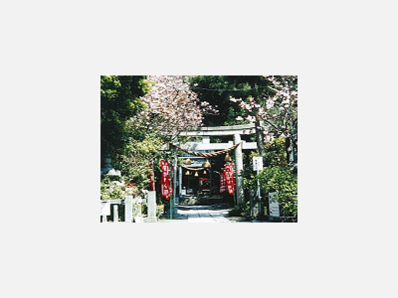 八雲神社_(鎌倉市大町)