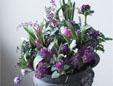 花のギャラリーワコー
