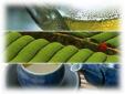 ハラダ製茶株式会社/本社