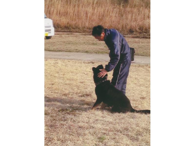 紀泉警察犬訓練所