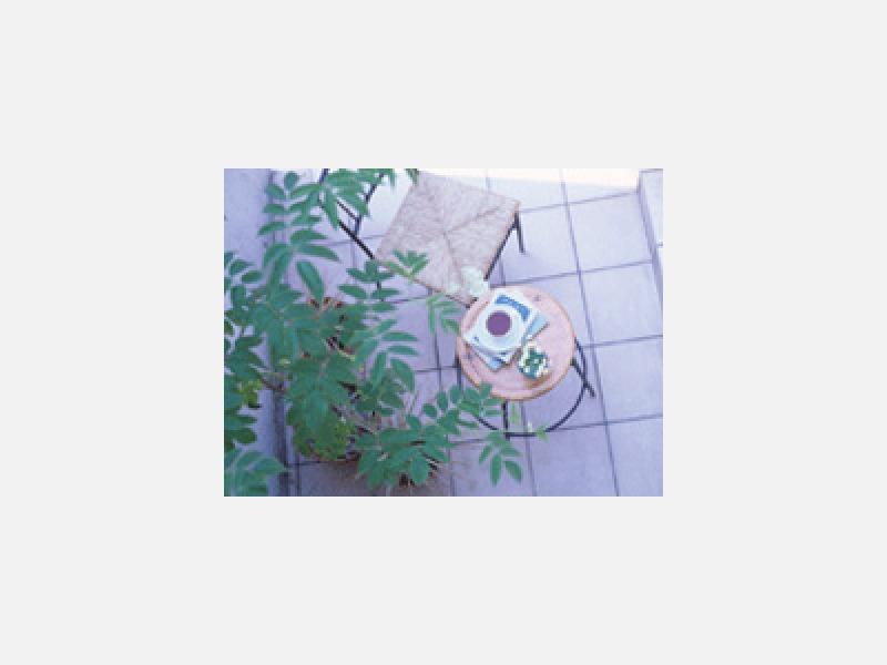 株式会社谷尾樹楽園