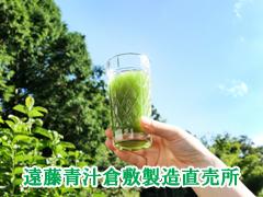 遠藤青汁倉敷製造直売所