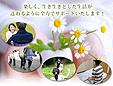 ワンハート介護サービスセンター/ありす児童デイサービス
