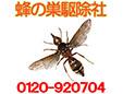 蜂の巣駆除社