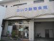 かいづ動物病院