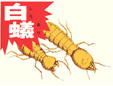 有限会社今村化学工業白蟻研究所本社