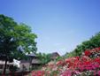 有限会社田村ガーデン