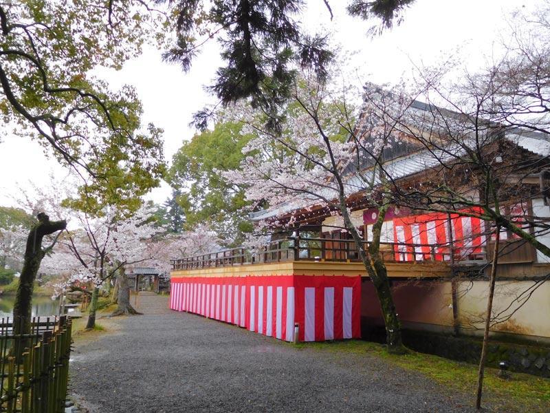 塚本茶華道教室